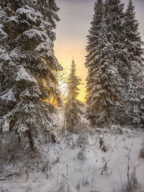 печора,коми,закат Один день северной зимыphoto preview