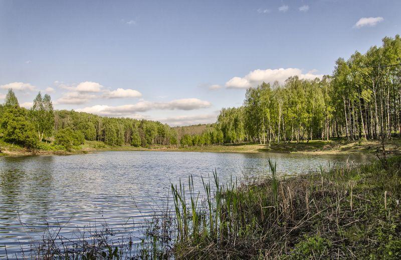 nevant60, пейзаж, красота, природа Озеро в лесуphoto preview