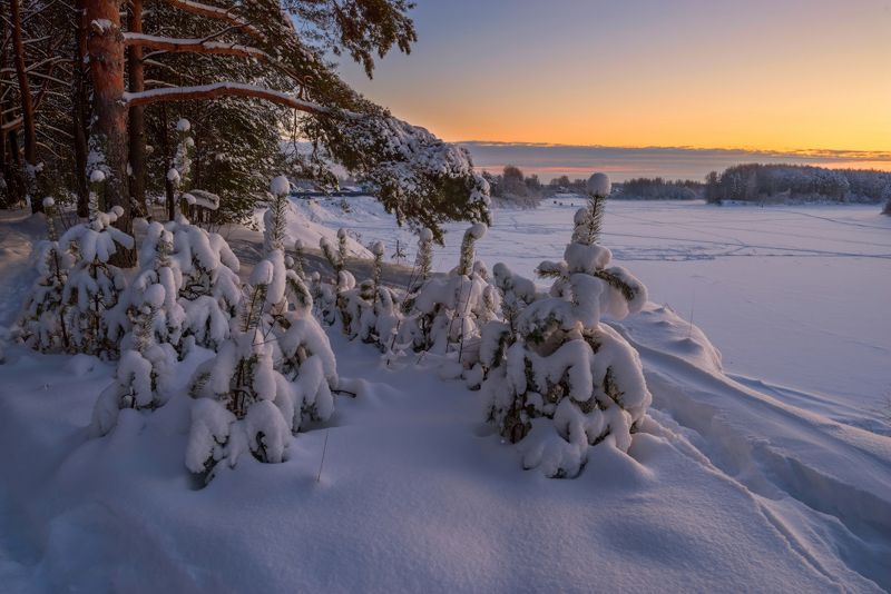 про зимние сумеркиphoto preview