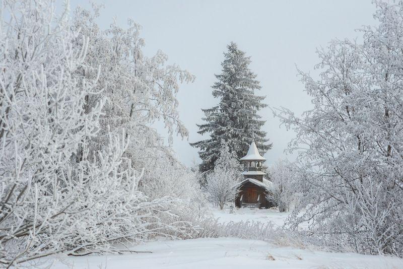 север,вологодчина,онего,ольково,зима ***photo preview