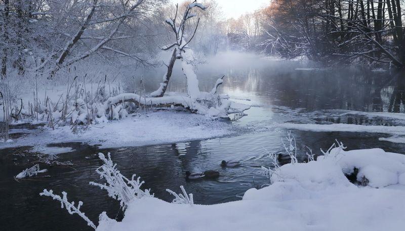 утро река Утро на рекеphoto preview