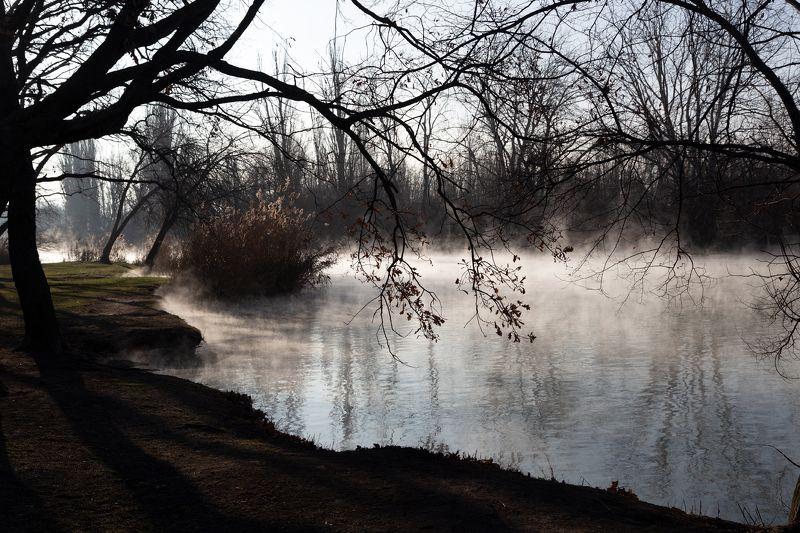 остров., туман, над, водой На островеphoto preview