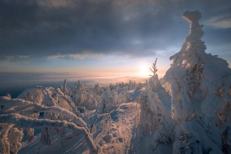 зима, январь, губаха, гора, крестовая, снег, мороз, утро, солнце Утро на Крестовойphoto preview