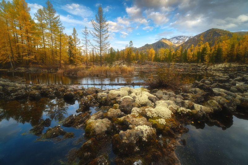 россия, бурятия, сибирь, окинский район, ока, природа, пейзаж, осень, долина, река, лава, тайга, закат, отражение, заход солнца Бурятияphoto preview