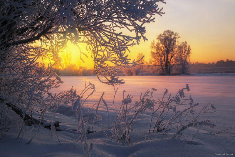 зима, закат, вечер, мороз, иней. Пушистый зимний вечерphoto preview
