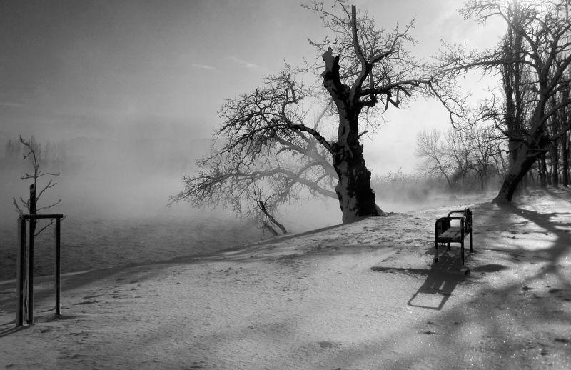зима. туман река Зимнее утроphoto preview
