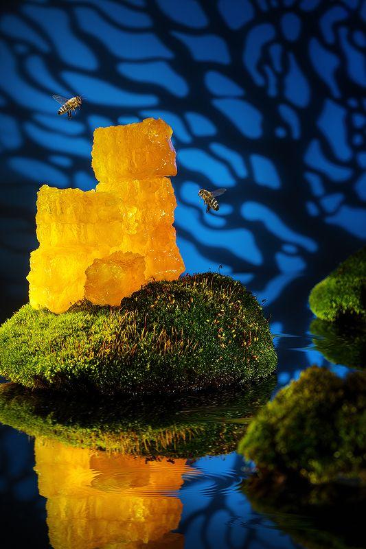 мед, пчелы, вода, фудфото, фудпейзаж *** фото превью