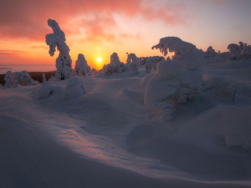 пейзаж,кольский,север,апатиты,мурманская область,зима,закат,nikon photo preview