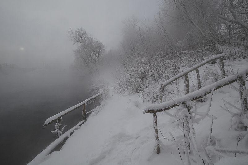 пейзаж, природа, зима, снег, мороз, тула, косая гора, озеро горячка Зимний берегphoto preview