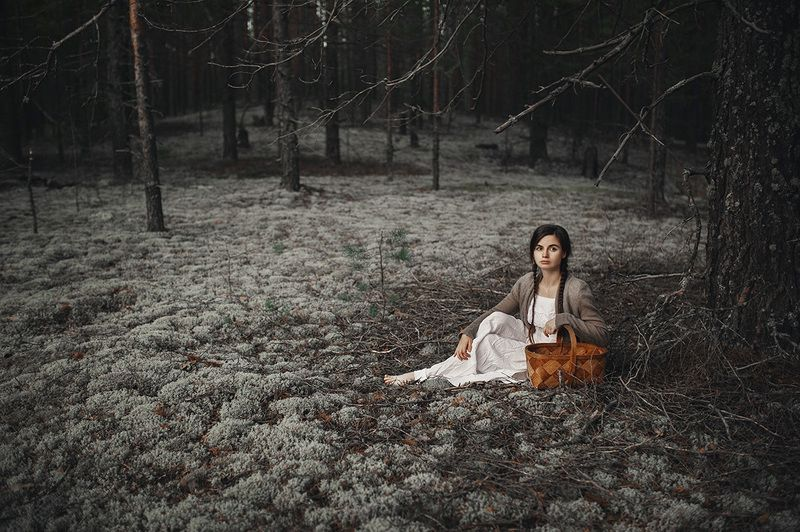 лес, удмуртия, мох Сказочный лесphoto preview