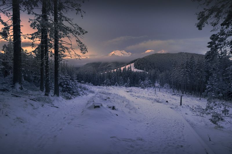Winter trailphoto preview