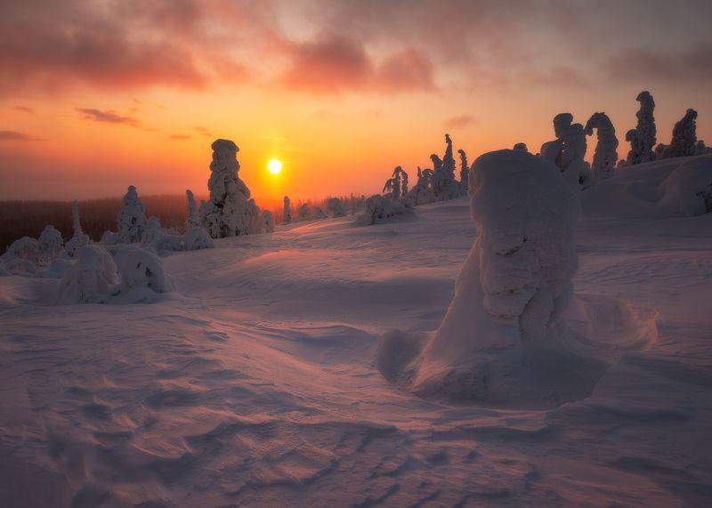 пейзаж,закат,кольский,север,россия,зима,свет,солнце Провожая солнцеphoto preview