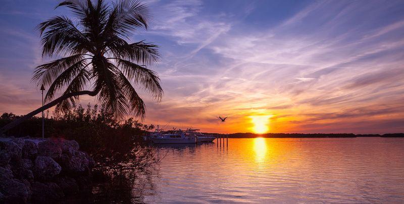 пейзаж,флорида,закат,отражения,небо,key west,яхты,корабли,вода,облака, Key West.Florida.photo preview