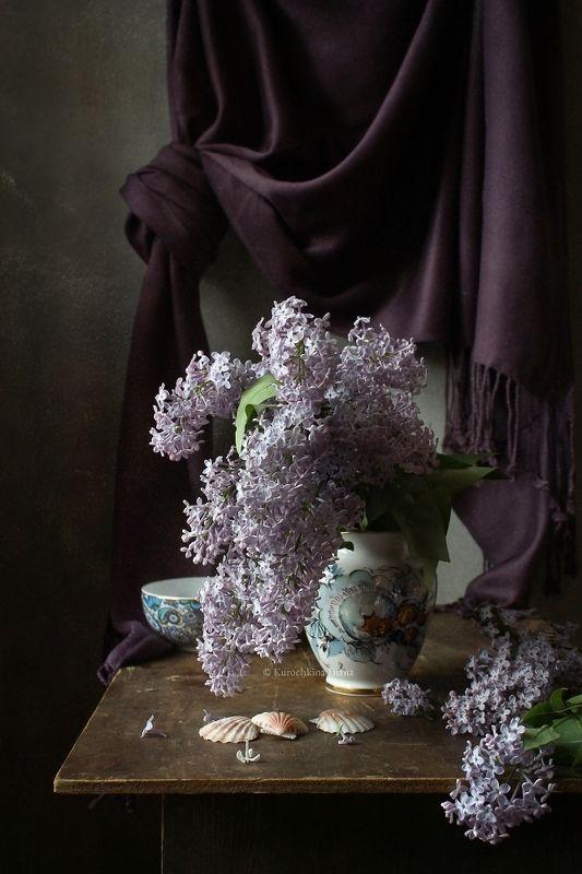 натюрморт, цветы, сирень Сиреньphoto preview