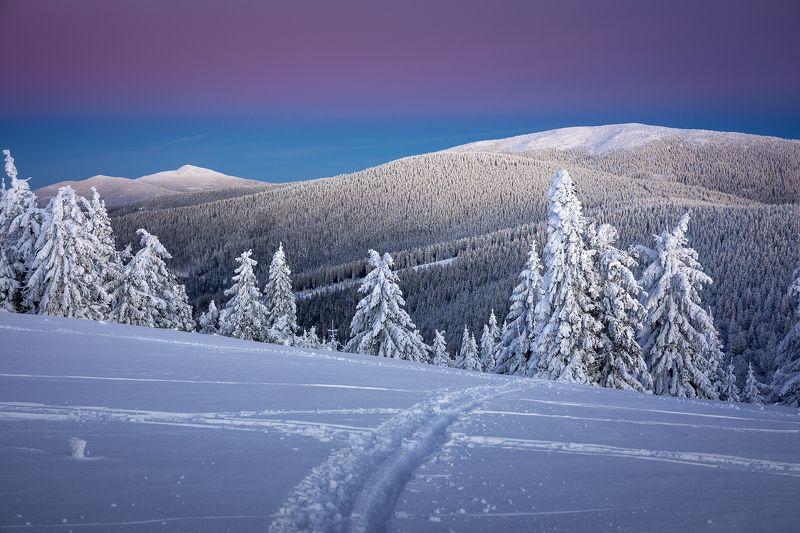 mountains, winter, poland, slovakia Evening in the Mountainsphoto preview