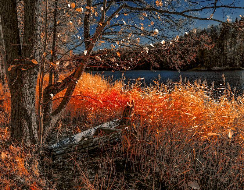 infrared,ик-фото,инфракрасное фото, инфракрасная фотография, пейзаж, осень Стоянка в теплой осени.photo preview