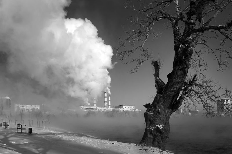 туман. солнечный остров Утроphoto preview