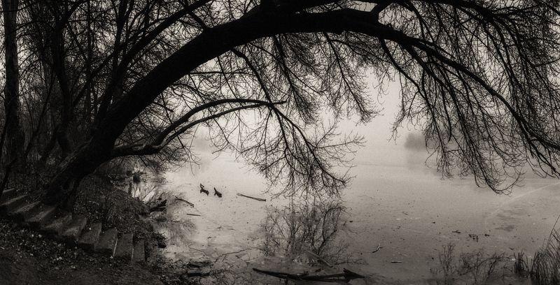 Есть в старом парке чёрный пруд...photo preview