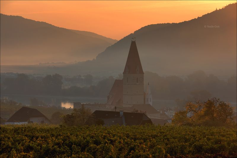 австрия,weißenkirchen,осень,белая церковь,wachau,österreich,виноградники Weißenkirchenphoto preview
