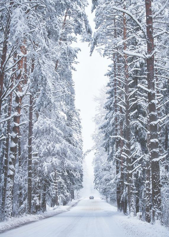 Winter roadphoto preview