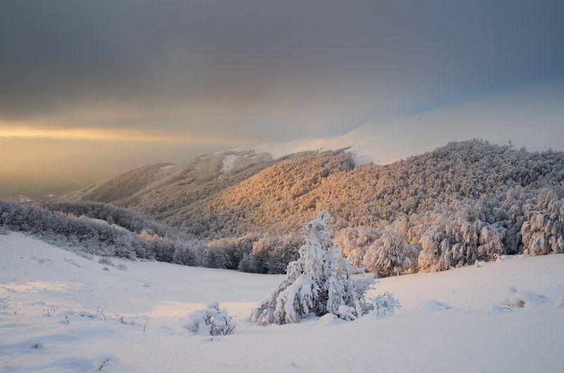 bieszczady, mountains, national park, poland, winter, snow, sunset, clouds, frost Bieszczadyphoto preview
