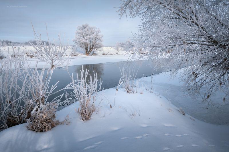 зима, пейзаж, угра Немного зимы...photo preview