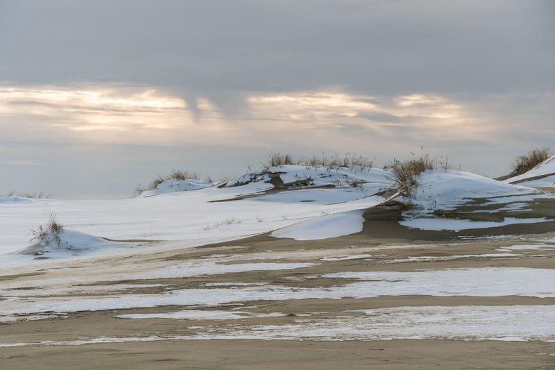Зима в дюнахphoto preview