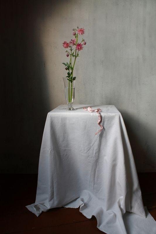 натюрморт, цветы, аквилегия, водосбор С цветком аквилегииphoto preview