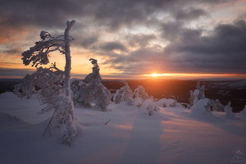 пейзаж, природа, зима Зимний закатphoto preview