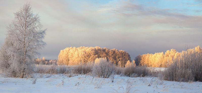 февраль утро мороз свет восход Морозное утроphoto preview