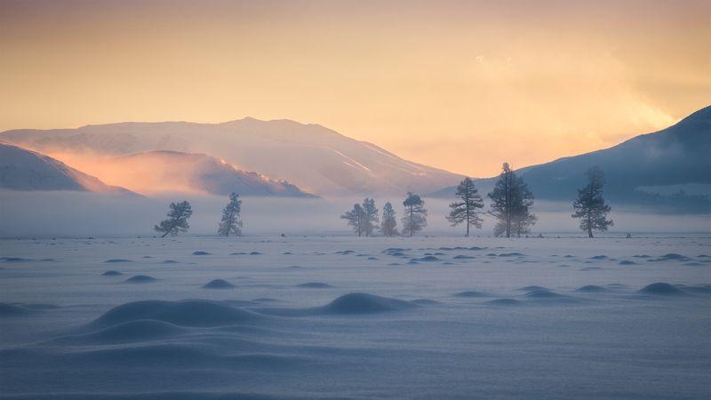 алтай, республика алтай, кош-агачский район, курайская степь, курай, зимний алтай, зима в горах, степь зимой, мороз, иней, туман, рассвет, зимнее утро Морозная негаphoto preview