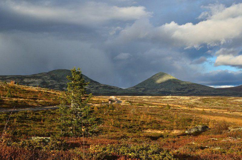 норвегия, осень Тёплый осенний вечерphoto preview