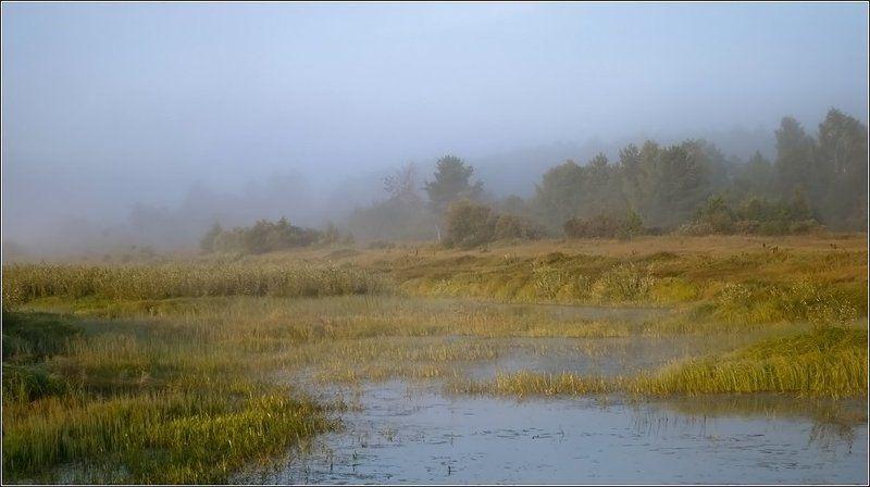 Осень наступаетphoto preview