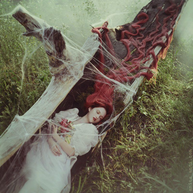 Sleeping Beautyphoto preview