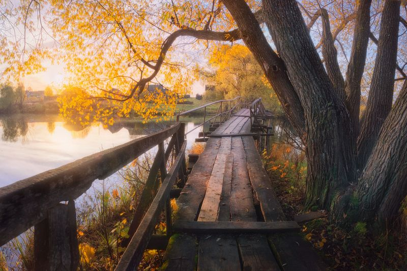 утро, мост, река, осень Осенними дорожкамиphoto preview