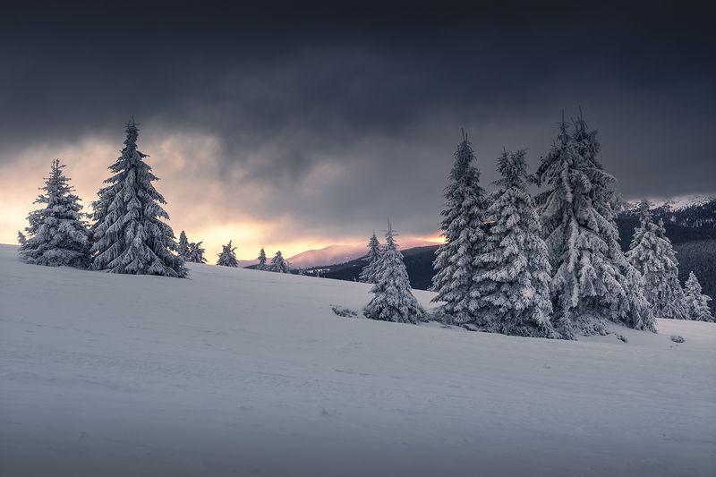 Winter in the Beskidsphoto preview