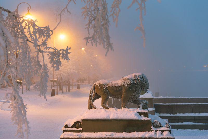 санкт-петербург прогулка снежного льва...photo preview