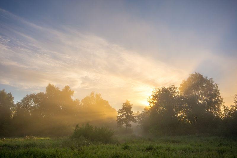 лето рассвет туман пейзаж солнце  Разгорался photo preview