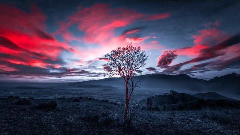 #landscape#nature Burning landphoto preview