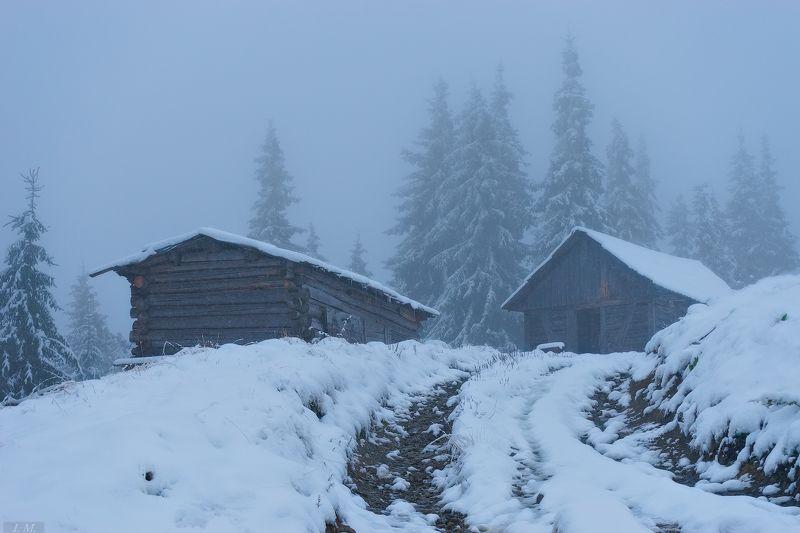 горы, Карпаты, лед, пейзаж, полонына, снег, туман, утро, холод, Черногора, frozen, ice, Carpathians, колыбы, foggy, pine trees, huts, morning, mountains, misty, cold, fog В ледяном тумане ..photo preview