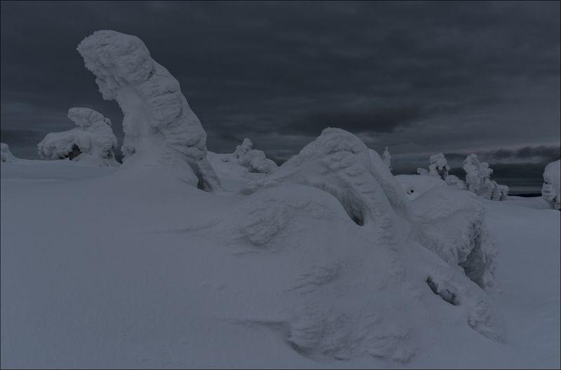 Зима за полярным кругомphoto preview