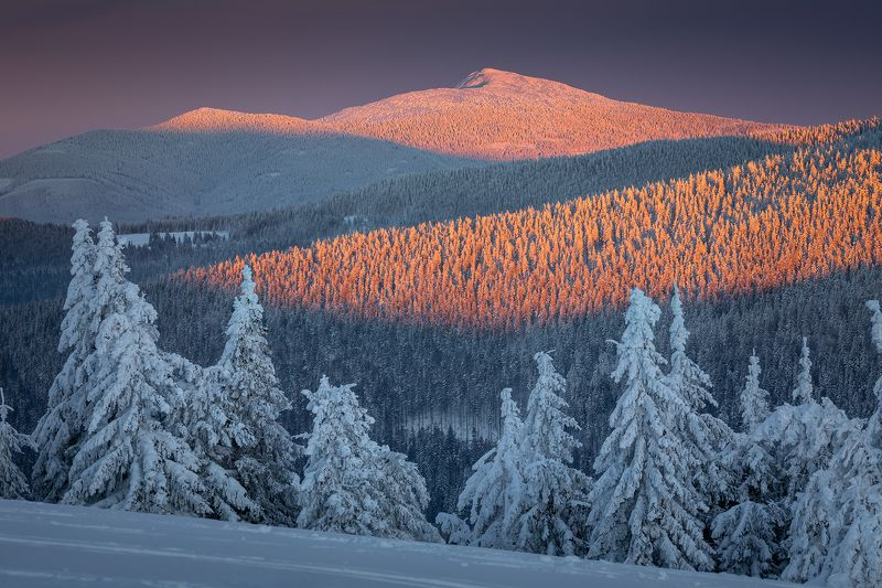 mountains, winter, poland, slovakia In the Sunset Lightphoto preview