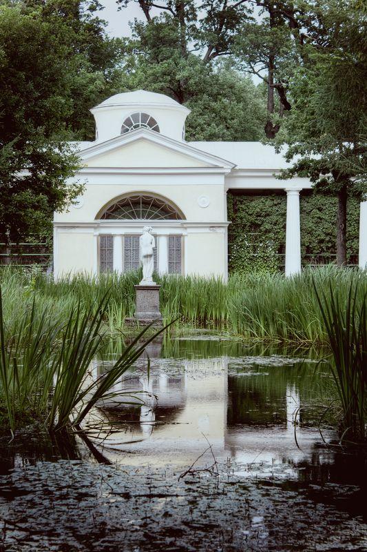 павловск, вода, гармония, зелень, пруд, статуя harmonyphoto preview