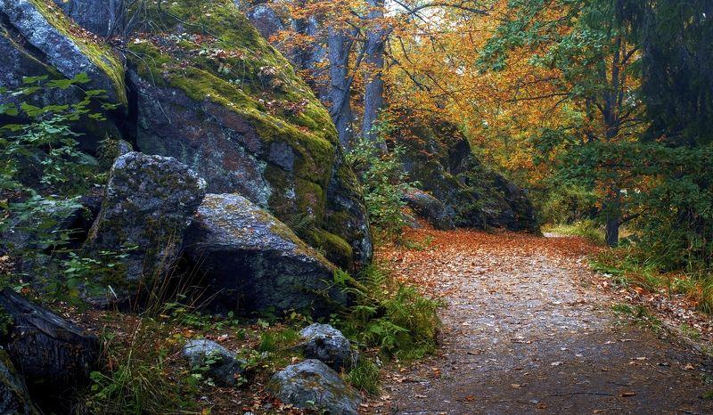 пейзаж,осень,природа,парк,камни,валуны,листья Осень в парке Монрепоphoto preview