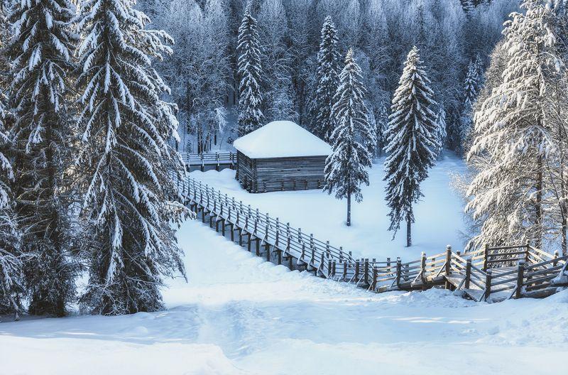 зима мороз синий иней лес деревья сосны ветки снег сугробы мостик дом Синий холод, тишинаphoto preview