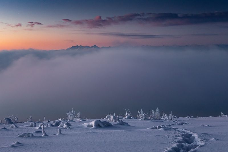mountains, winter, poland, slovakia, morning Morning in the Mountainsphoto preview