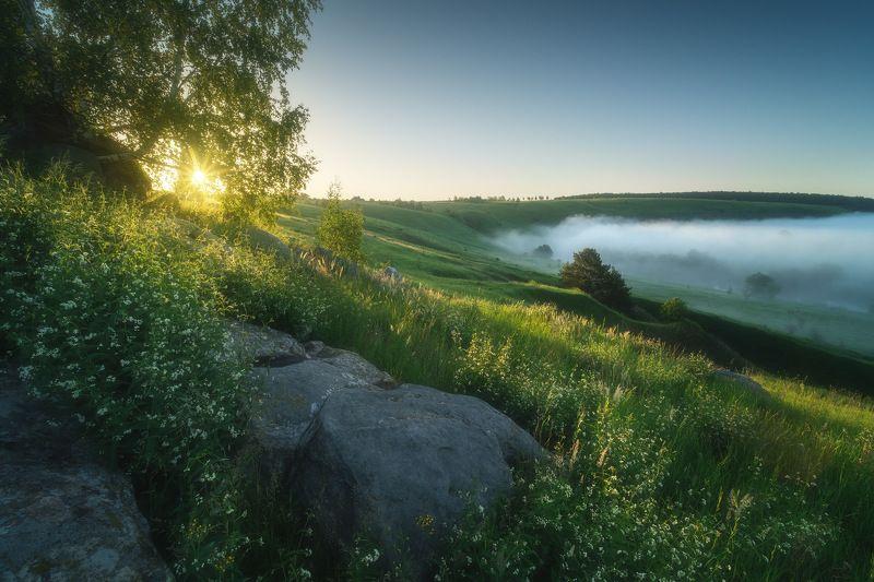 россия, тульская область, ефремов, красивая меча, река, лето, природа, пейзаж, рассвет, туман, солнце, луг Красивая Мечаphoto preview