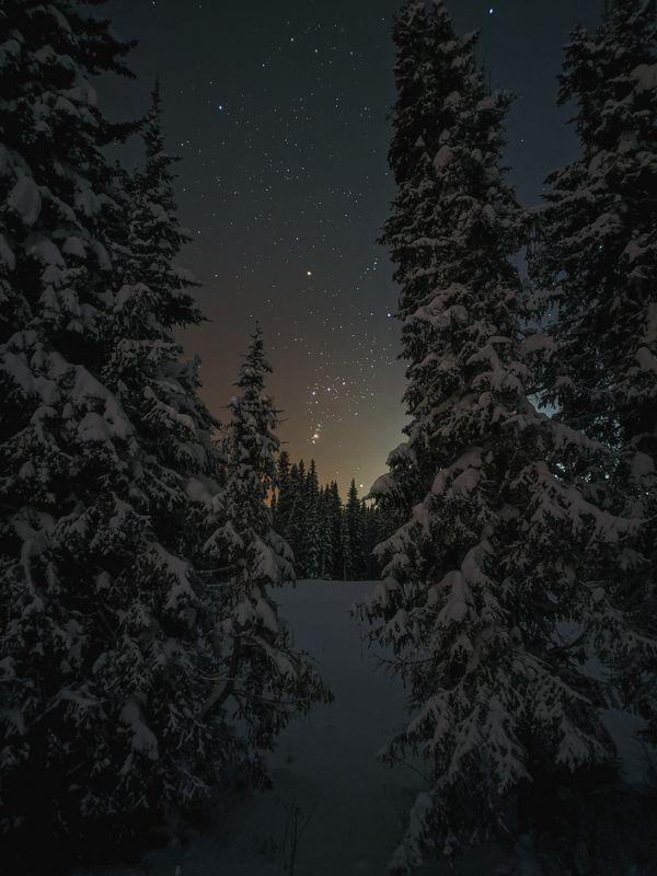 печора,ночь,звезды Окно в Космосphoto preview