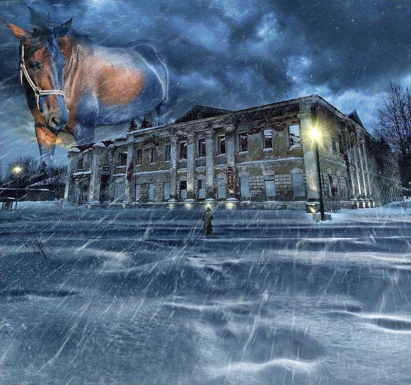 Зимние стражи Усадьбы...photo preview