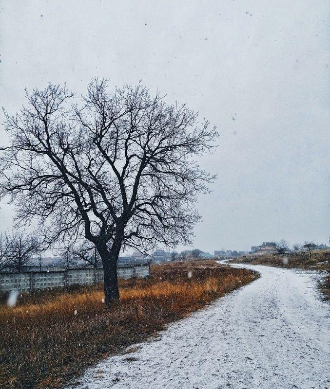 зима Тоскаphoto preview